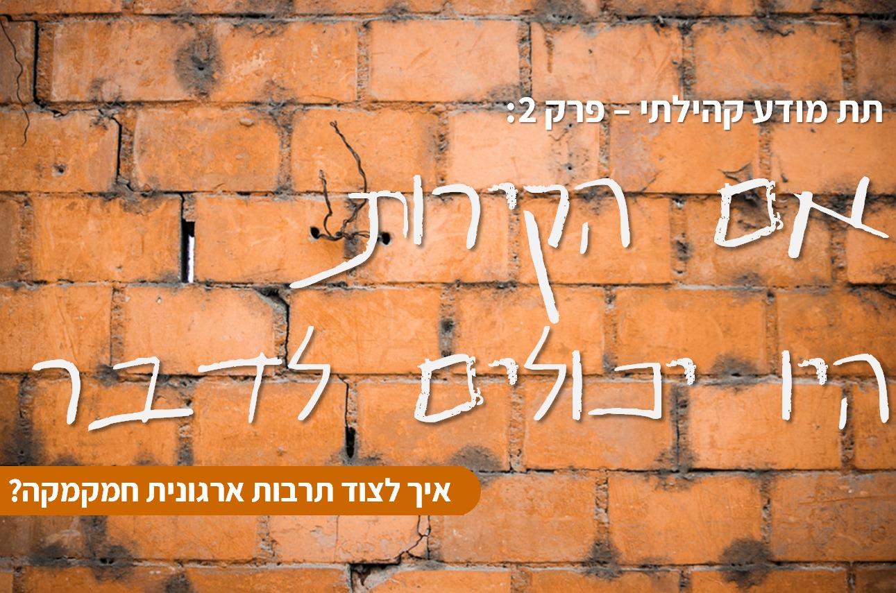 תת מודע קהילתי – פרק 2 :  אם הקירות היו יכולים לדבר