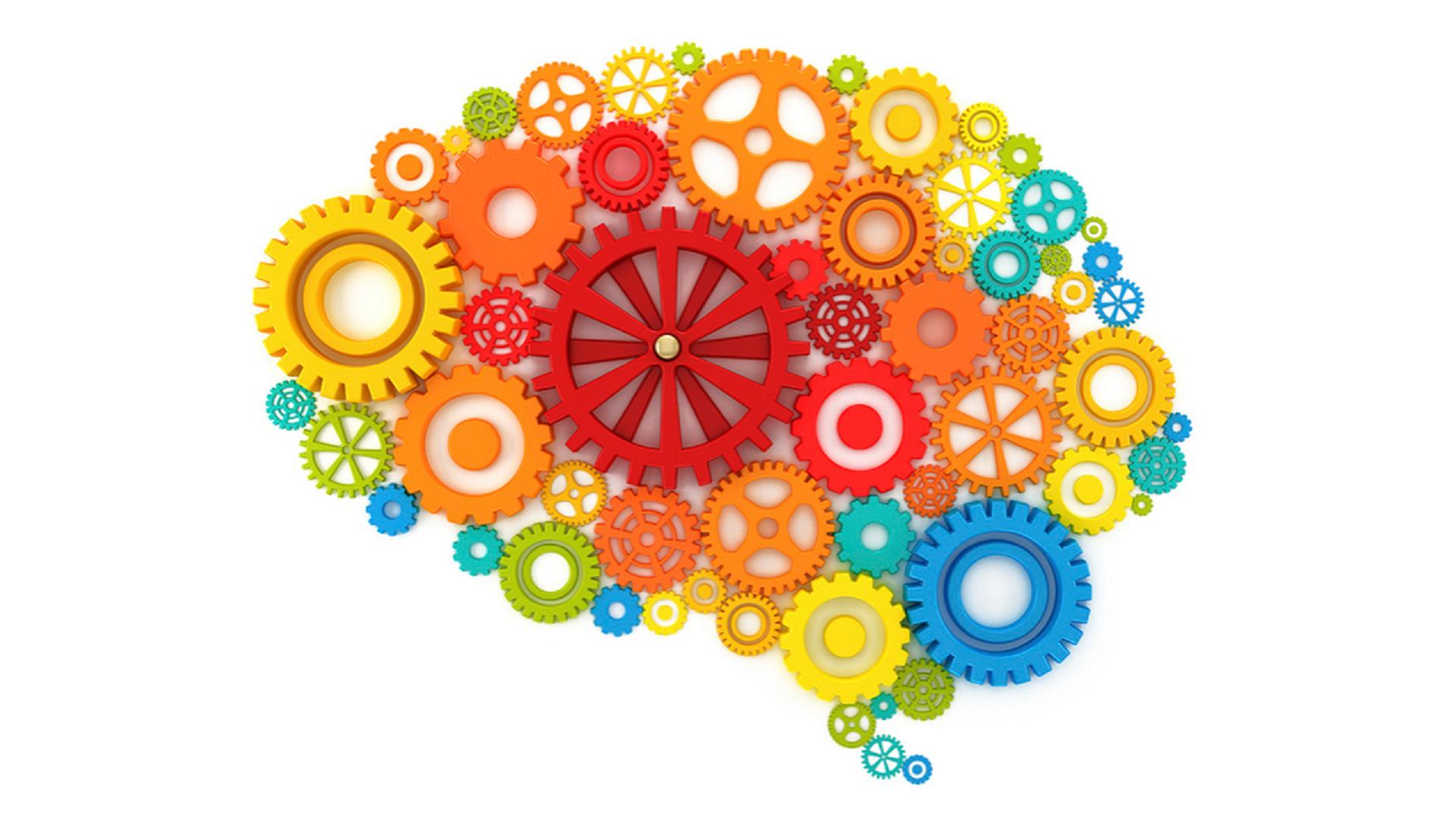 מוח גלגלים 1920 על 1080